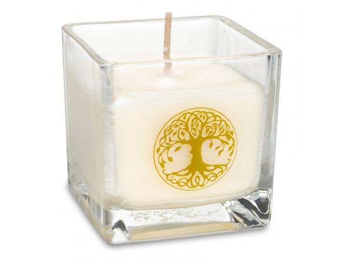 Svíčka - strom života