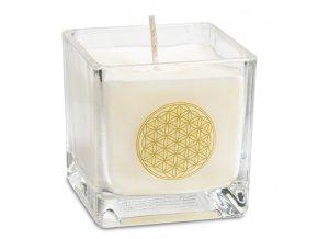 Svíčka - květ života