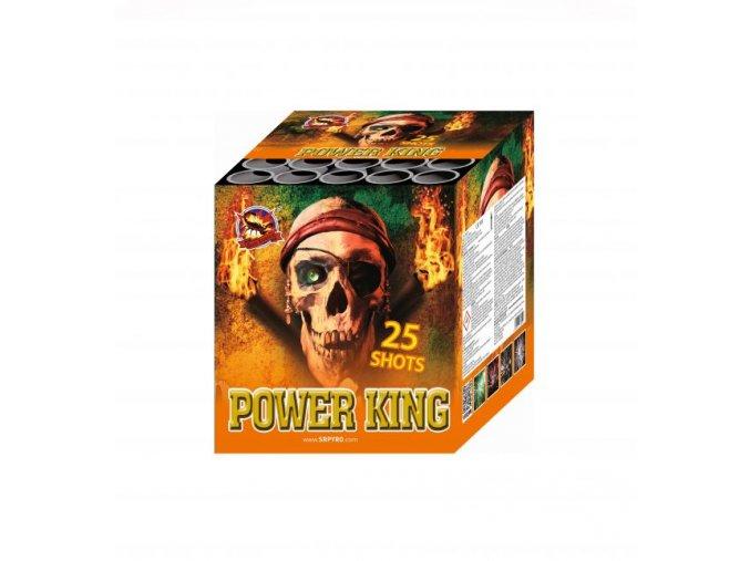 204 power king