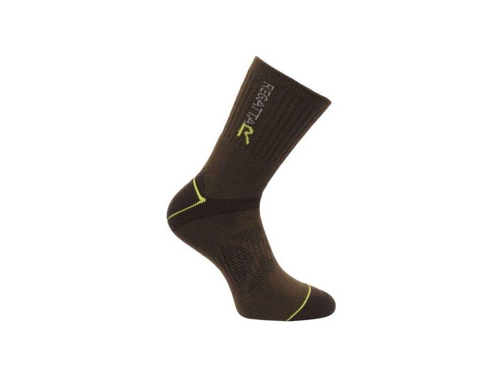 Pánské ponožky Regatta BlisterP Clove/OasisG hnědé