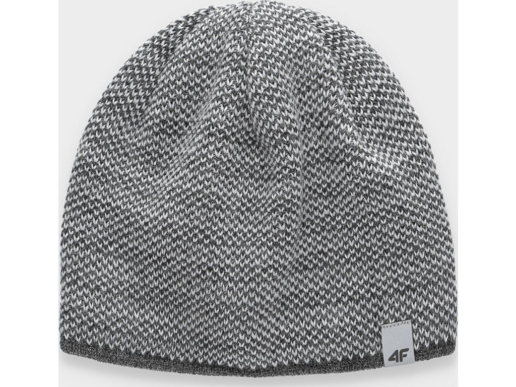 Pánská zimní čepice 4F CAM156 Šedá