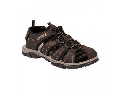 Pánské sandály Regatta RMF600 Westshore II Hnědé 04