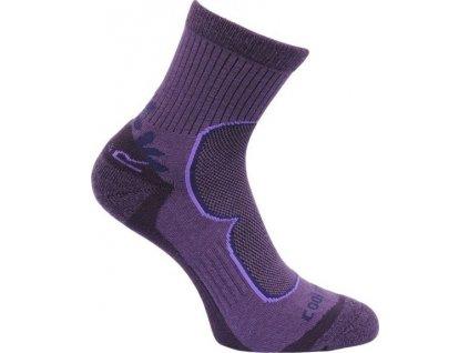Dámské ponožky Regatta W Active LS 2Pack Blkberry/Viv fialové