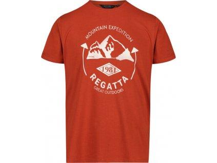 Pánské tričko Regatta RMT206 Cline IV 3HW oranžové