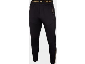 Pánské sportovní kalhoty 4F  SPMTR201R Černé