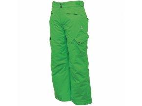 32627a54165 Dětské lyžařské kalhoty Dare2B DKW036 STOMP IT OUT Fairway Green