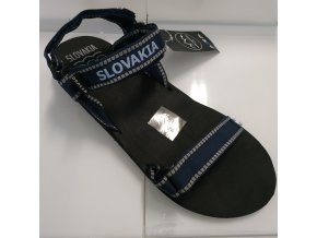 Pánské sandály SVDMF309 DARE2B Lockeford Modré