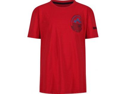 Detské tričko Regatta RKT106 Bosley III 2EY