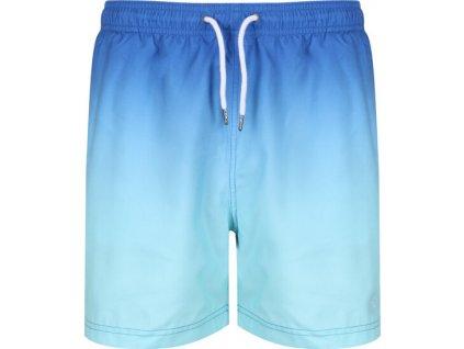 Pánske plavkové šortky Loras Swim Short 48U