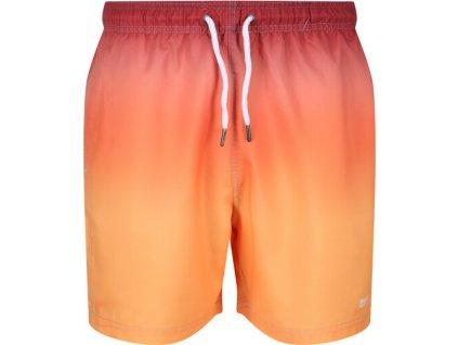 Pánske plavkové šortky Loras Swim Short 4JC