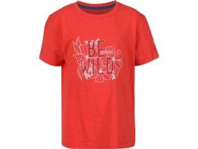 Detské tričko REGATTA RKT106 Bosley III Oranžové