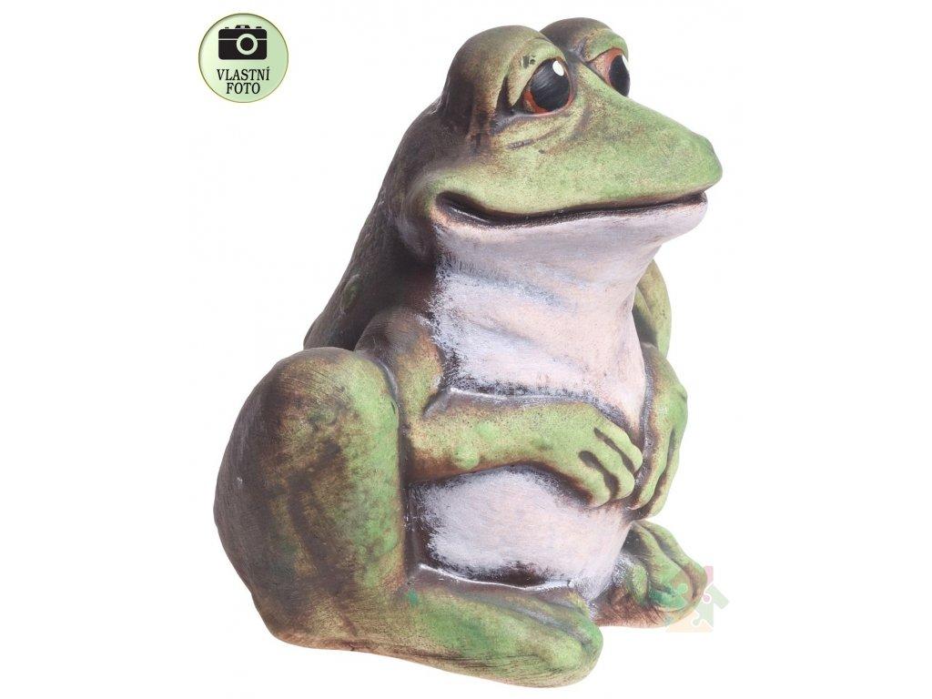 Pokladnička žaba Scott