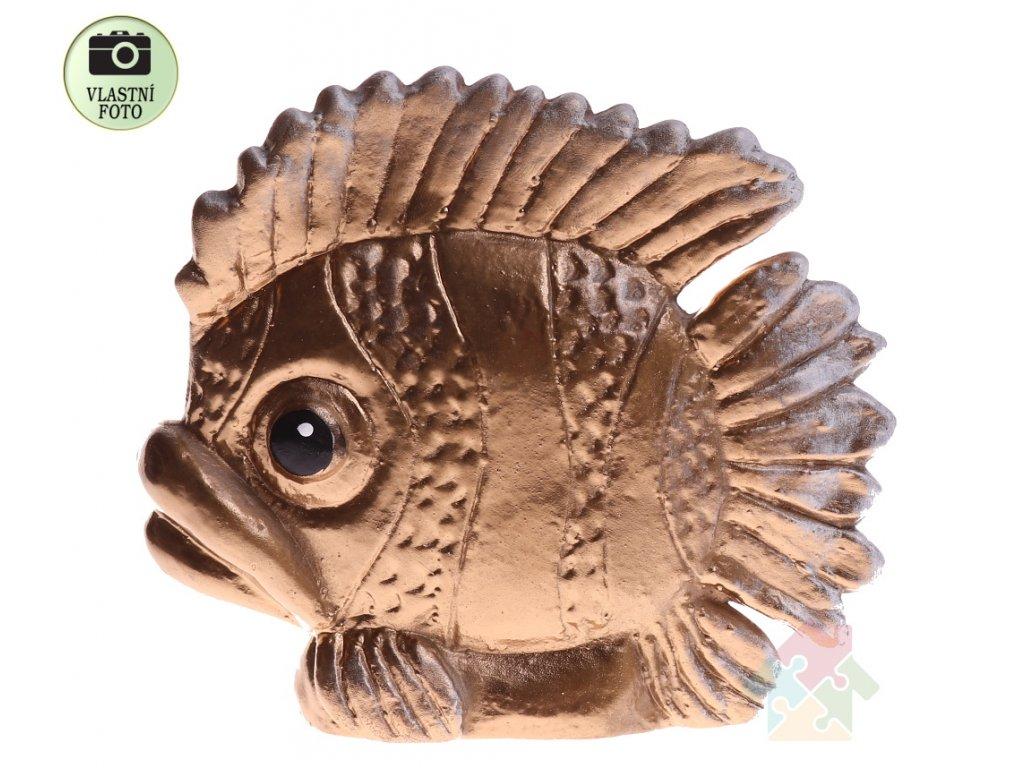 zlatá ryba
