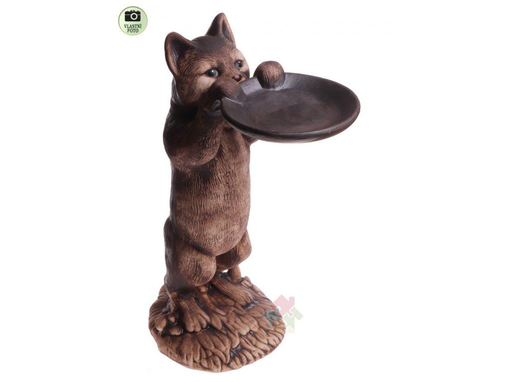 kočka s talířem