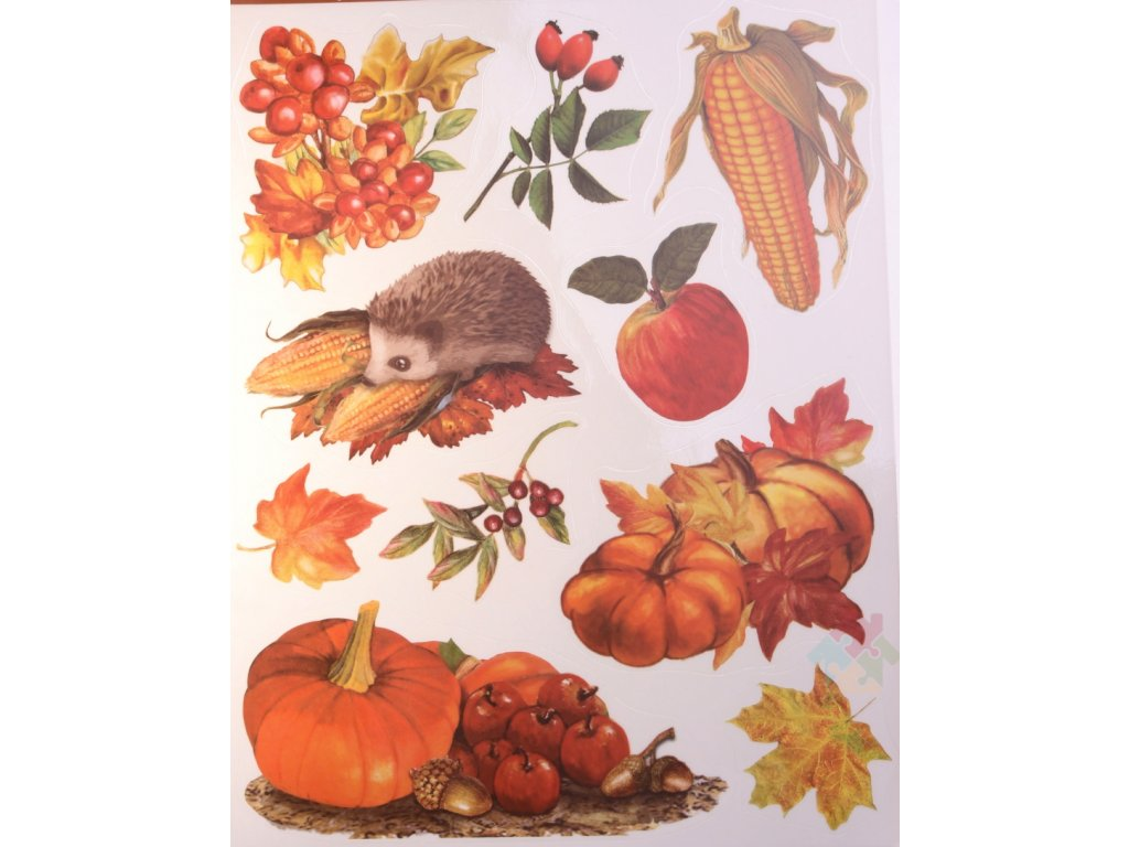 podzimni dekorace do oken