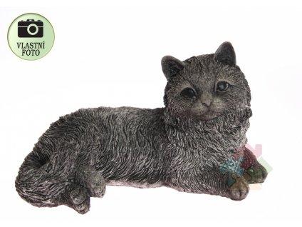 socha kočky