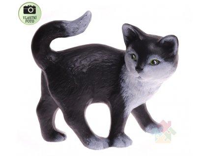 kočka Sazínek