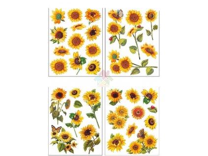 slunečnice okenní fólie