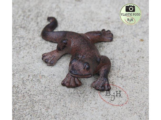 ještěrka na zahradu