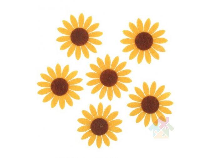 slunečnice 8563
