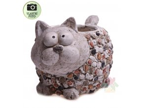 květináč kočka