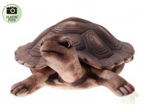 zahradni dekorac želva