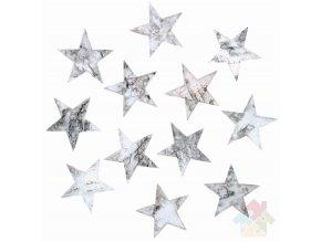 hvězdy z kůry 3858