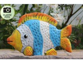 rybicka do jezirka