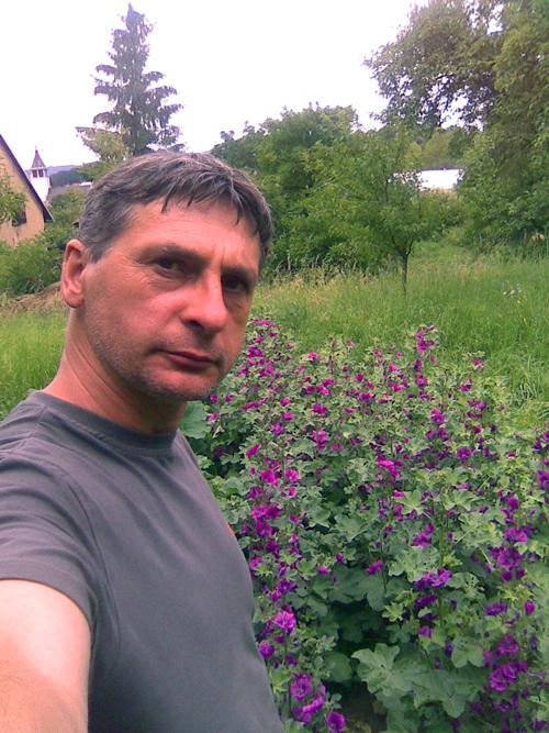 O-NÁS-bylinář-na-zahradě-se-slézem