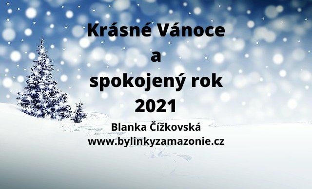 KRÁSNÉ VÁNOCE A SPOKOJENÝ ROK 2021