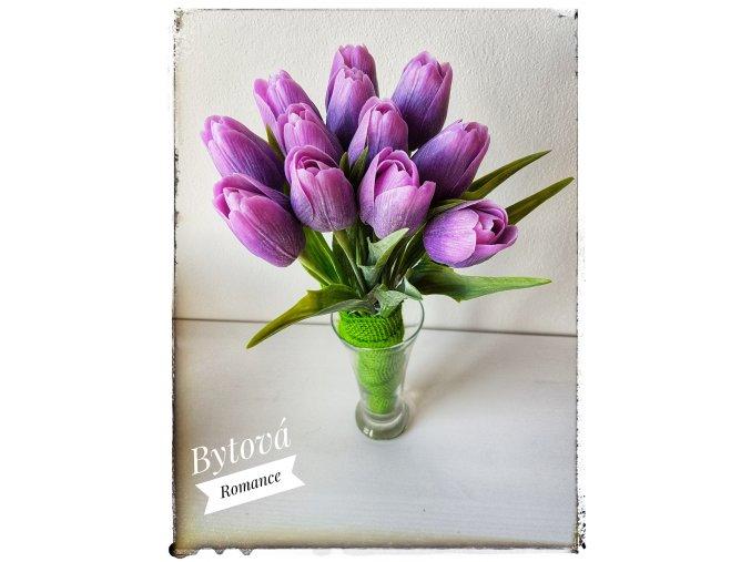 Tulipán tmavě fialový