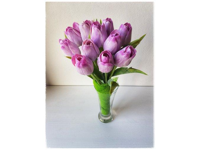 Tulipán světle fialový
