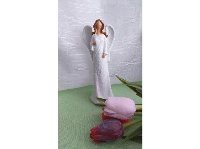 Andělka bílá 1