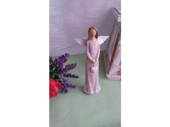 Andělka růžová 1