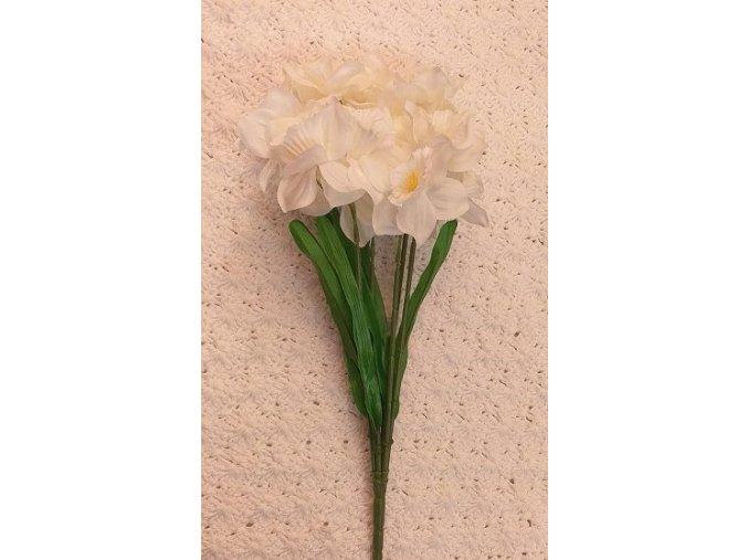Narcis bílý