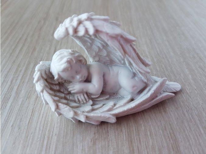 Anděl spící v křídlech