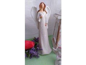 Andělka krémová 2