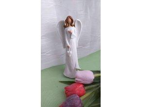 Andělka bílá 2
