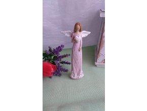 Andělka růžová 2