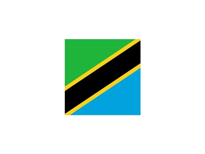 tanzania flag square xs