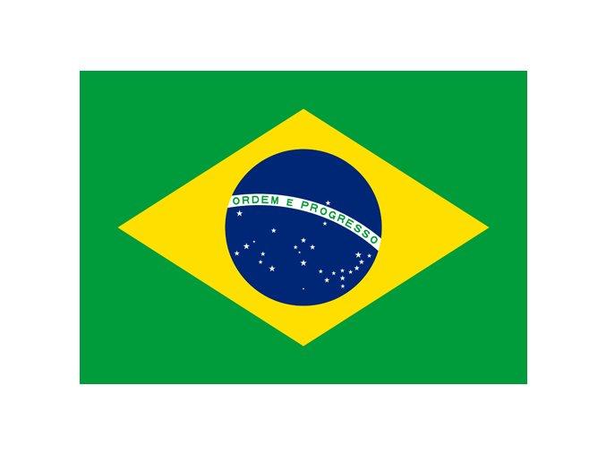 brazil flag small