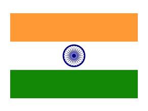 india flag xs