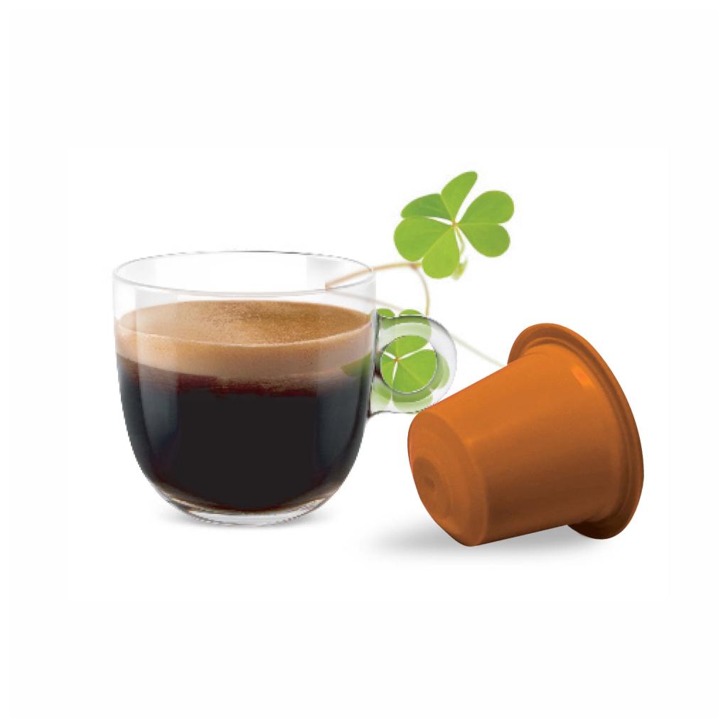 bonini caffe irska kava kapsule nespresso 10ks caffeitaliano