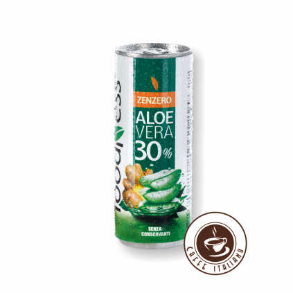 Aloe Vera Zázvor 250g