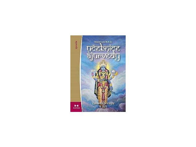 big ucebnice ajurvedy i zakladni princi 7T6 274838