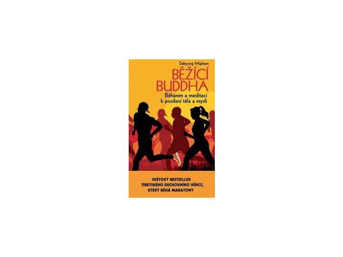 mid bezici buddha 230617