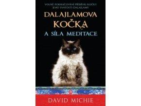 mid dalajlamova kocka a sila meditace PzA 293922