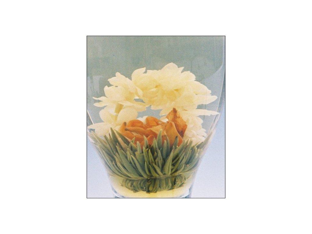 Kvetoucí bílý čaj Kvetoucí láska