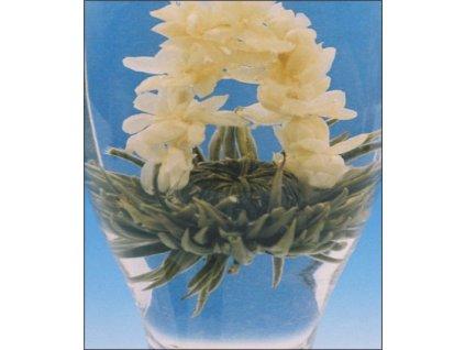 Kvetoucí bílý čaj Ranní květina