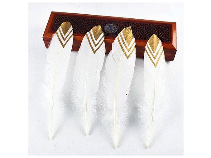 Zlacené bílé peří ozdobné 02